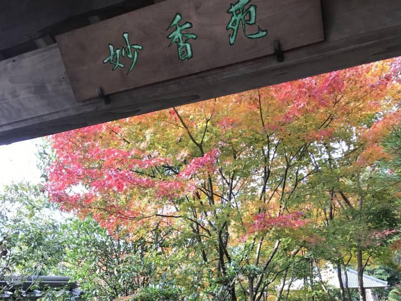 日本庭園「妙香苑」